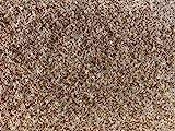 havatex Rasenteppich Kunstrasen mit Noppen 1.550 g/m² - Rot Blau Grau Braun Beige oder Anthrazit | Meterware | wasserdurchlässig | Balkon Terrasse Camping, Farbe:Beige, Größe:200 x 300 cm
